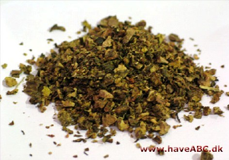Rhodiola rosea is very effective for improving mood and alleviating depression. It has also been used for centuries in Scandinavia, both by the Vikings and the Sámi. See more...
